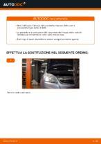 Come sostituire il cuscinetto del mozzo della ruota anteriore su Opel Zafira B A05