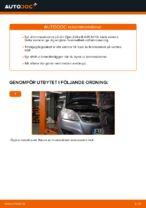 Hur byter man och justera Bromsskivor OPEL ZAFIRA: pdf instruktioner