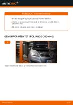 PDF guide för byta: Hjullagersats OPEL bak och fram