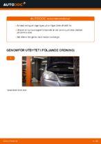 Hur byter man Hjullagersats bak och fram OPEL ZAFIRA B (A05) - handbok online