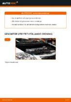 Manuell PDF för AURIS underhåll