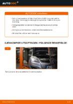 Hvordan bytte bakre bremseskiver på Opel Zafira B A05