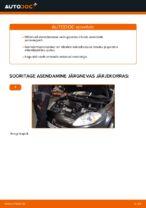 FIAT käsiraamatute laadida