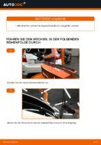 Wie Sie die hinteren Wischerblätter am Toyota Auris E15 ersetzen