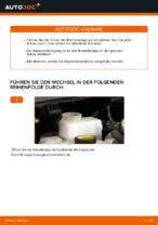 DIY-Leitfaden zum Wechsel von Bremssattel Reparatursatz beim TOYOTA AURIS (NRE15_, ZZE15_, ADE15_, ZRE15_, NDE15_)