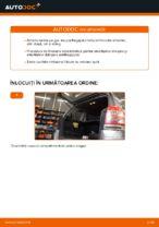 Cum se înlocuiesc amortizoarele pe gaz ale ușii portbagajului pe Opel Zafira B A05