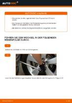Wie Radlagersatz hinten rechts links austauschen und anpassen: kostenloser PDF-Anweisung