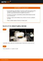 Schimbare Set discuri frana TOYOTA AURIS: pdf gratuit