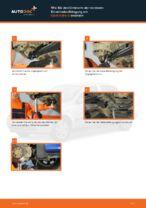 OPEL ASTRA G Hatchback (F48_, F08_) Kennzeichenleuchten Glühlampe wechseln Anleitung pdf