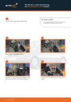 DIY-Leitfaden zum Wechsel von Axialgelenk beim PEUGEOT 207 2020