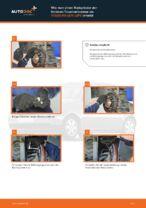 Kennzeichenleuchten Glühlampe wechseln VW LUPO: Werkstatthandbuch