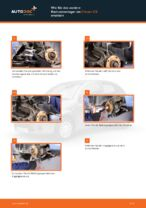 Tipps von Automechanikern zum Wechsel von CITROËN CITROËN C3 I (FC_) 1.4 i Scheibenwischer