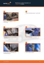DIY-Leitfaden zum Wechsel von Halter, Stabilisatorlagerung beim CITROËN C3 I (FC_)
