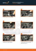 Tipps von Automechanikern zum Wechsel von FORD Ford Focus mk2 Limousine 1.8 TDCi Stoßdämpfer