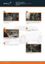 Werkstatthandbuch für Suzuki Swift AA online