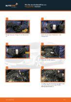 Tipps von Automechanikern zum Wechsel von PEUGEOT Peugeot 407 Limousine 1.6 HDi 110 Federn