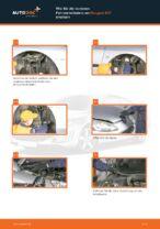 Schritt-für-Schritt-Anweisung zur Reparatur für Peugeot 407 Coupe
