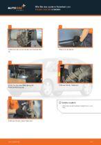 BMW X4 Bremssattel Reparatursatz ersetzen - Tipps und Tricks