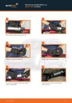 Tipps von Automechanikern zum Wechsel von BMW BMW E60 525d 2.5 Domlager