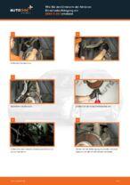 Wie Bremszange hinten links beim BMW 5 (E60) wechseln - Handbuch online