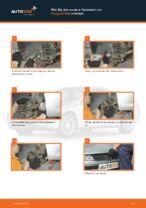 Skoda Rapid NH3 Glühbirne Kennzeichenbeleuchtung: Online-Handbuch zum Selbstwechsel