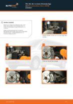 BRECK 21899 00 702 20 für VIANO (W639) | PDF Handbuch zum Wechsel