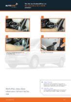 Tipps von Automechanikern zum Wechsel von MERCEDES-BENZ Mercedes Viano W639 CDI 3.0 (639.811, 639.813, 639.815) Stoßdämpfer
