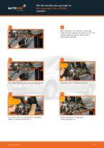 Honda Jazz AA Achskörperlager wechseln Anleitung pdf