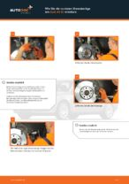 KAMOKA 20960 für A4 Avant (8ED, B7) | PDF Handbuch zum Wechsel