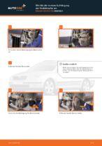Tipps von Automechanikern zum Wechsel von SKODA Octavia 1z5 1.6 TDI Querlenker