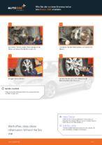 SWAG 99 90 5649 für 3 (BK) | PDF Handbuch zum Wechsel