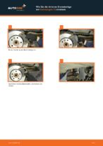 Wie Lagerung Radlagergehäuse beim VW TRANSPORTER V Platform/Chassis (7JD, 7JE, 7JL, 7JY, 7JZ, 7FD) wechseln - Handbuch online
