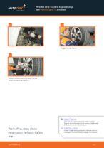 Schritt-für-Schritt-PDF-Tutorial zum Koppelstange-Austausch beim VW TRANSPORTER V Platform/Chassis (7JD, 7JE, 7JL, 7JY, 7JZ, 7FD