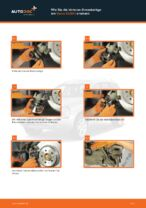 RIDEX 402B0045 für XC90 I (275) | PDF Handbuch zum Wechsel