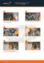 Schritt-für-Schritt-PDF-Tutorial zum Kennzeichenleuchten Glühlampe-Austausch beim VOLVO XC90 I