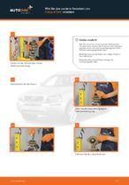 VOLVO XC90 I Bremsbacken für Trommelbremse: Online-Handbuch zum Selbstwechsel