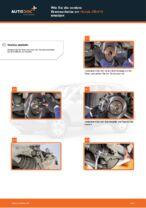 DAIHATSU TERIOS Bremszylinder Hinten ersetzen - Tipps und Tricks