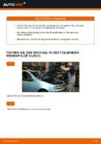 FIAT PUNTO (188) Federbein: Online-Handbuch zum Selbstwechsel