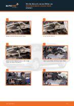 Ratschläge des Automechanikers zum Austausch von MERCEDES-BENZ W202 Mercedes C 250 2.5 Turbo Diesel (202.128) Bremsscheiben