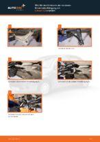 Lenker Radaufhängung unten vorne/hinten wechseln: Online-Anweisung für CITROËN C3