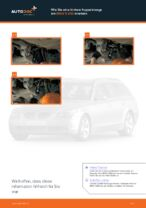 Wie Sie eine hintere Koppelstange am BMW 5 E60 ersetzen