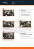 PDF Wechsel Tutorial: Bremsklötze MERCEDES-BENZ E-Klasse Limousine (W210) hinten + vorne