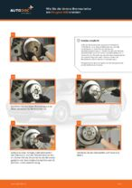 Empfehlungen des Automechanikers zum Wechsel von PEUGEOT Peugeot 406 Kombi 2.0 16V Spurstangenkopf