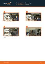 VW TRANSPORTER V Platform/Chassis (7JD, 7JE, 7JL, 7JY, 7JZ, 7FD) Bremsbeläge: PDF-Anleitung zur Erneuerung