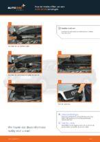 Handleiding PDF over onderhoud van A4