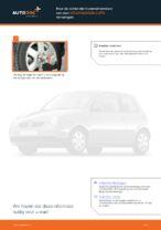 Aanbevelingen van de automonteur voor het vervangen van VW VW Lupo 6x1 1.0 Remschijven