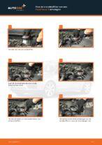 Ford C-Max dm2 reparatie en onderhoud tutorial