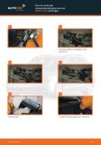 Hoe de achterste veerpootbevestiging van een BMW 5 E60 vervangen