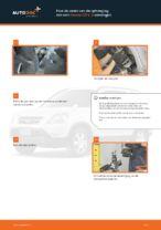 Vering / Demping vervangen en reparatie handleiding met illustraties