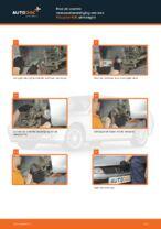 Ruitenwisser Mechaniek veranderen PEUGEOT 406: werkplaatshandboek